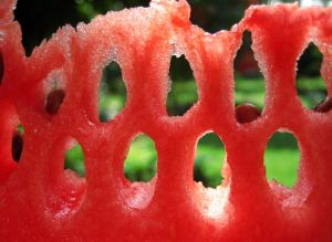 watermelon-summer-environment_37375_600x450